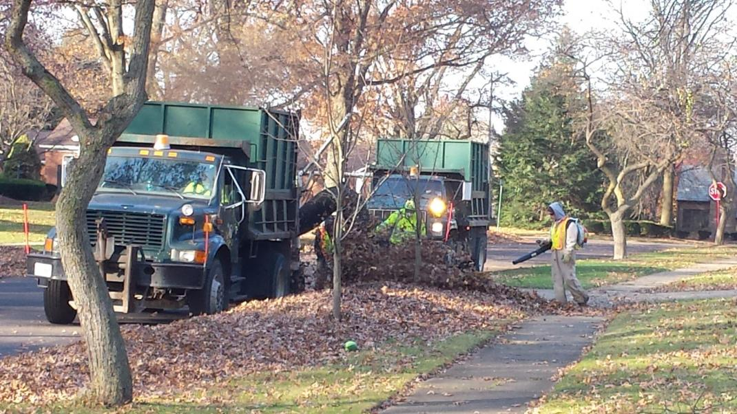 leaf collection city of wooster ohio