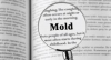 Learn About Mold Icon